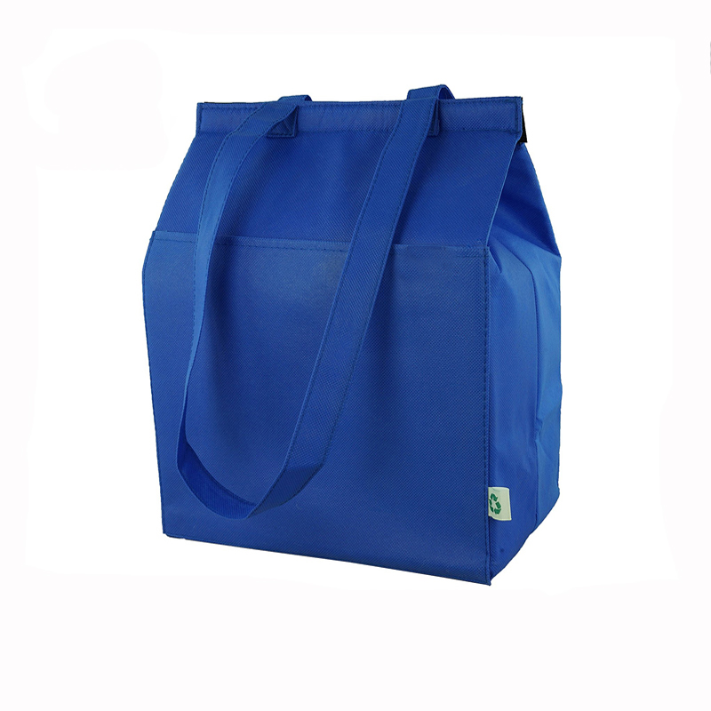 5 - Polyester Insulated cooler bag.jpg